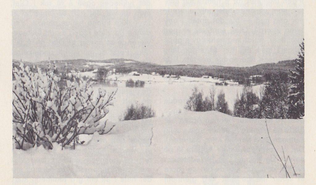 Slik vi gjerne ser Harstadsjøen en vinterdag.